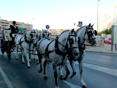 carruajes-oct17-05